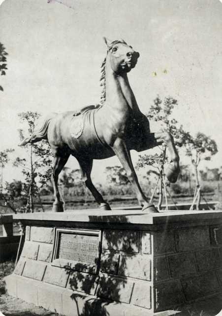horse0001.jpg